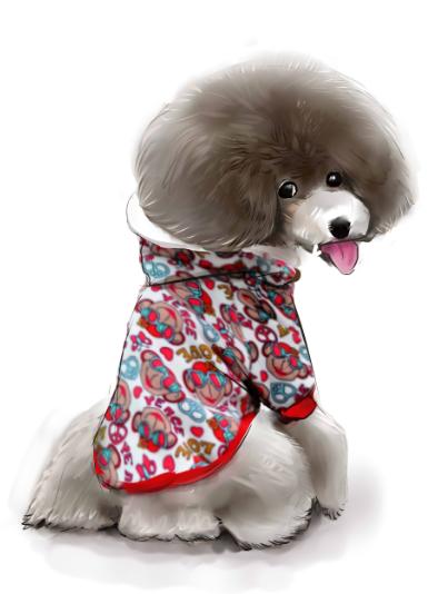 猫咪狗狗宠物手绘漫画卡通形象设计 q版宠物插画头像个性礼品定制