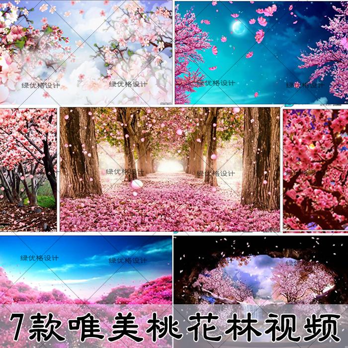 高清动态樱花花瓣飘落唯美视频素材
